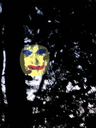 Pohled do větví - s přimalovaným xichtíkem